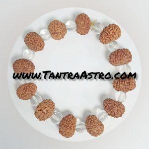 9 face rudraksha bracelat