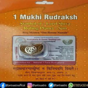 ek mukhi rudraksha tantraastro