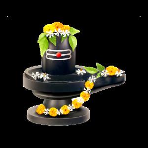 rudrabhishek-puja tantra astrorudrabhishek-puja tantra astrorudrabhishek-puja tantra astrorudrabhishek-puja tantra astro